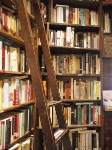 bookshelves with a ladder in french bookshop
