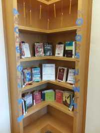Writing books for NaNoWriMo display